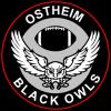 BlackOwls_Logo
